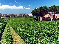 Kuchnia Włoska Regionalne Produkty I Dania Kuchnia