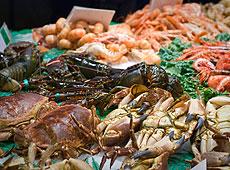 Owoce Morza Kuchnia