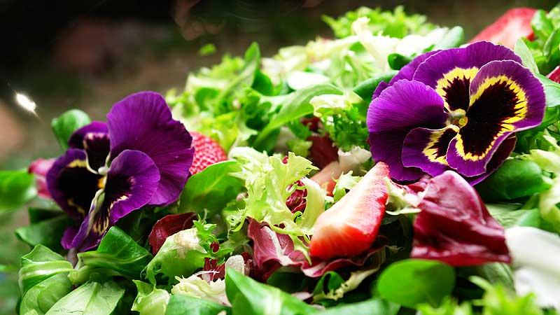Mix sałat z kwiatami jadalnymi