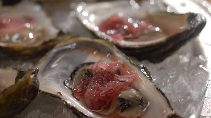 Ostrygi z marynowaną szalotką